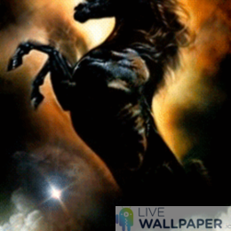 Black Horse Live Wallpaper - a cool phone background.