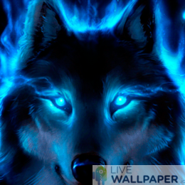 Wolf Live Wallpaper - a cool phone background.