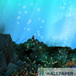 Underwater Live Wallpaper - a cool phone background.