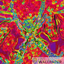 Psychedelic Spider Wallpaper - a cool phone background.