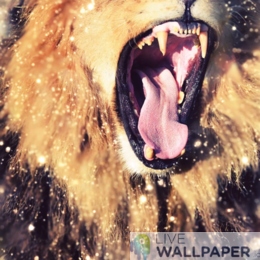 Lion Gold Glitter Background - a cool phone background.