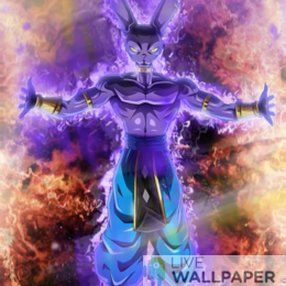 Beerus Live Wallpaper - a cool phone background.