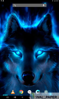 Wolf Live Wallpaper App Store For Android Wallpaper App Store Livewallpaper Io