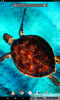 Sea Turtle Wallpaper - a cool phone wallpaper for Android - Screenshot #1