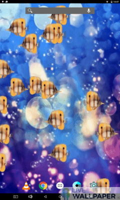 Tropical Fish Background - a cool phone wallpaper for Android - Screenshot #1