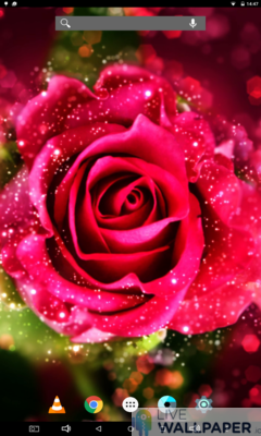 Rose Glitter Background - a cool phone wallpaper for Android - Screenshot #3