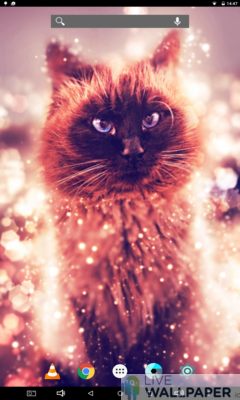Cat Gold Glitter Background - a cool phone wallpaper for Android - Screenshot #3