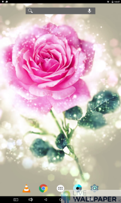 Happy Rose Day Wallpaper - a cool phone wallpaper for Android - Screenshot #1