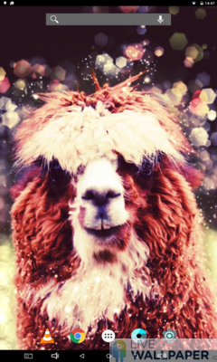 Cute Alpaca Live Wallpaper - a cool phone wallpaper for Android - Screenshot #2